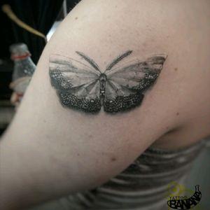 Moth By Ela. #tattoobanana #tattoo #tattoos #tatts #bodyart #inked #thurles #ink #tattoolovers #tatuaze #worldfamousink #sabretattoosupplies #irleandstudio #tattooprime #moth