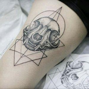 Skullcat dotwork #skull #skullcattattoo #dotworktattoo #blackworktattoo #geometrictattoo