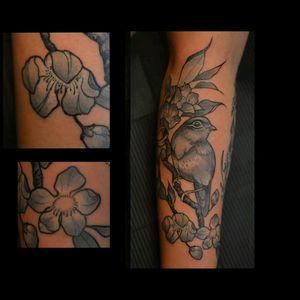 #tattoosnancy #nancytattooer #nancytattoos #amsterdamtattoo # #tattoodo #tattoosnob #artnouveau #artnouveautattoo #botanical #botanicaldrawing#botanicaltattoo #beauty #art #arttattoo #tattooart #tattrx #equilattera #bird #cherryblossom #sakura