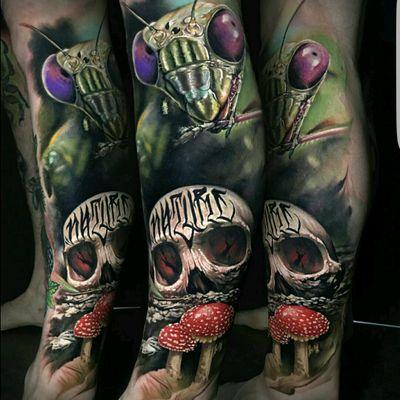 #tattoo #antfarm #skullz #skull #tattoodo #colorfull #color #inked #tattoo #realism #skulltattoo #rad #realism #realistic #imk #art #dreamtattoo #insect #mushroom #mushrpoms #mushroomtattoo #ant #anttattpo #tattooart #fullcolor #colour #unreal #hyperrealism #skulls #sugarskull