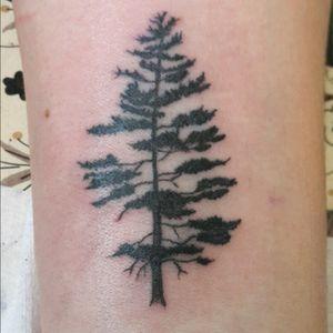 #tree #familytree #oremnts #beginner #first #skills
