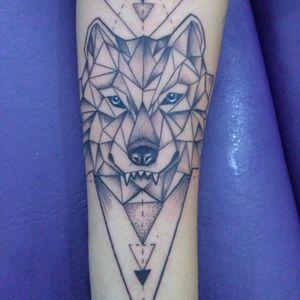 Lobo geométrico!