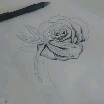 #dragonfly and #rose