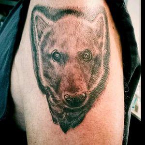 Husky memorial. #husky #wolf #dog #dogtattoo #wolftattoo #armtattoo #huskyportrait