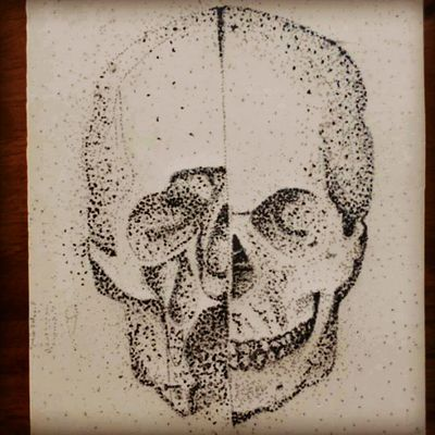 #skull #LeonardodaVinci #dots #anatomy