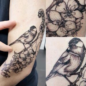 #bird #birdtattoo #backwork #sketchstyletattoo #sketchstyle #blossomtattoo #flower #flowertattoo #floraltattoo #floraandfaunatattoo #worldfamousink #spektradirekt2 #inkyneedles