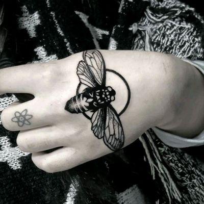 Cicada #cicada #insect #dotting #bug
