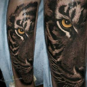 Tiger Done at @elmonodetinta #seville By @el_mono_tatuador Hecho en @elmonodetinta @balm_tattoo @artdriver_tattoomachines @worldfamousink @artdriver_tattoomachines #sevilla #sevillatattoo #tattoosevilla #andalucia #elmonodetinta #d_world_of_ink #bluebird_needle_cartridges @d_world_of_ink #tattoodo @tattoodo