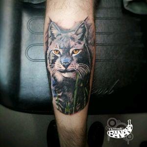 Lynx cat By Ela. #tattoobanana #tattoo #tattoos #tatts #bodyart #inked #thurles #ink #tattoolovers #tatuaze #worldfamousink #sabretattoosupplies #irelandtattoostudio #tattooprime #easytattoo_uk #lynxtattoo #realism #realismtattoo
