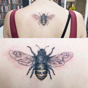 #bee #illustrative #sketch #fineline