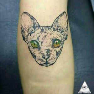 #ericskavinsktattoo #extremeskincare #cattattoo #tattoogato #pontilhismotattoo #dotworktattoo #exclusive #miau #bichano #tatuagem #inked #tattoo #tattooanimal #animaltattoo #tattooworkers