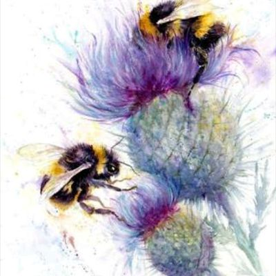 Found this beauty online #bee # thistle # watercolour # watercolor