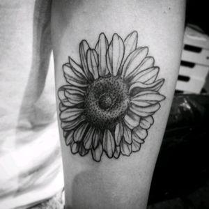 Flower #villelatattoo #blackandgrey #blackandgreytattoo #riodejaneiro
