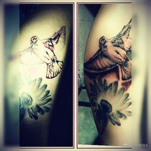 Taube tattoos
