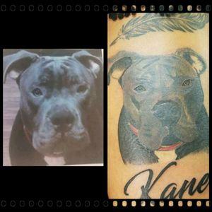 #realism #tattoorealism #realismartist #realismartists #realistictattoo #realistictattoos #pitbull #dogportrait #greyscale