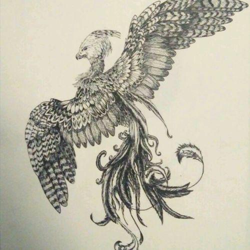 #PhoenixTattoos  #phoenix #tattoo #tattoodesing #ink #bird