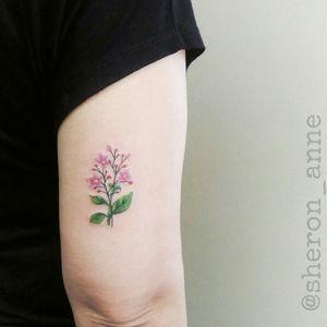 #floraltattoo #flowertattoo #fineline #finelinetattoo #BrazilianTattooArtists #femaletattooartist #SheronAnne