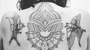 #mandala #birds #slovakia #bratislava #lovethis #tattooart #tattoo #tattooartist #black #lines #intenzetattooink #blacksumi