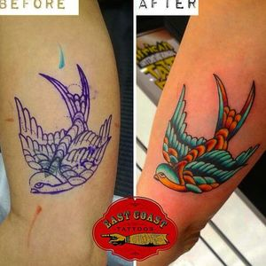 Cover up swallow #coveruptattoo #neotraditionaltattoo #swallowtattoo