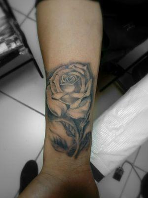 Rose  Black.and Grey