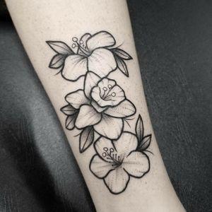Daffodils :) #blackandgreytattoo #blackworktattoo #blackworkerssubmission #blackworkers #darkartists #chicagoartist #ladytattooers #linework #dotwork #handpoke #ornamental #decorative #floral #daffodil #flowers