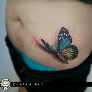 3d buterfly