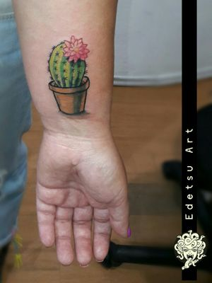 Tint and cute cactus, but not less important