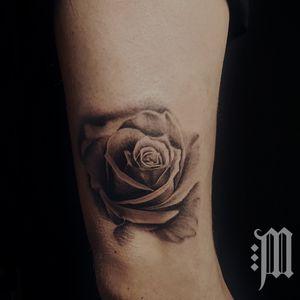 #rose #blackandgrey #realistic #roses #rosen