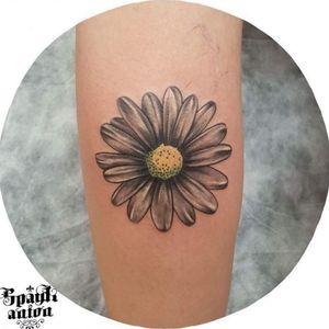 #tattoo #tattoos #tattooed #tattoist #art #design #instaart #instagood #sleevetattoo #handtattoo #tatted #instatattoo #bodyart #amazingink #tattedup #inkedup #sketchtattoo #tattoodesign #daisytattoo #daisytattoos #blxckink #blackandgreytattoo #blackandwhitetattoo #txttoo #tattism #tattrx #inkmag #inkedmag #tattoodrawing