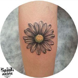 #tattoo #tattoos #tattooed #tattoist #art #design #instaart #instagood #sleevetattoo #handtattoo #tatted #instatattoo #bodyart #amazingink #tattedup #inkedup #sketchtattoo #tattoodesign ##blxckink #blackandgreytattoo #blackandwhitetattoo #txttoo #tattism #tattrx #inkmag #inkedmag #tattoodrawing #daisy #dalsytattoo