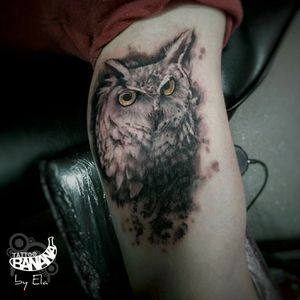 Owl By Ela #tattoobanana #tattoo #tattoos #owl #owltattoo #realistic #realism #tattoo2me #tattooed #tattooer #tattooink #tattooart #tattooartist #tattooist #bodyart #inked #thurles #ink #tatuaze #tatuaje #worldfamousink #sabretattoosupplies #eztattooing #irelandtattoostudio #tattooshop