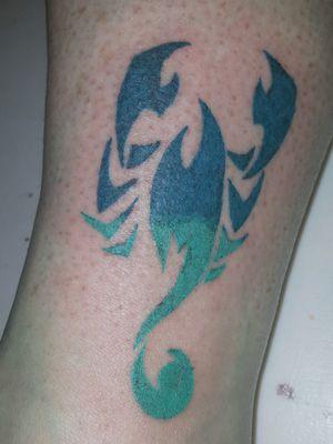 #scorpion #scorpio #astrologicalsign #ombre #blues