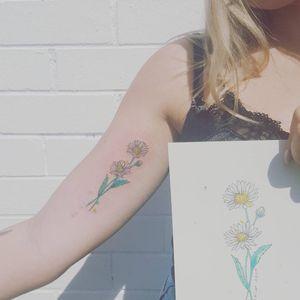 Dainty daisy #daisytattoo #watercolortattoos #flowertattoo #floraltattoo #prettyinink #girlytattoos #ladytattooers #customtattoo