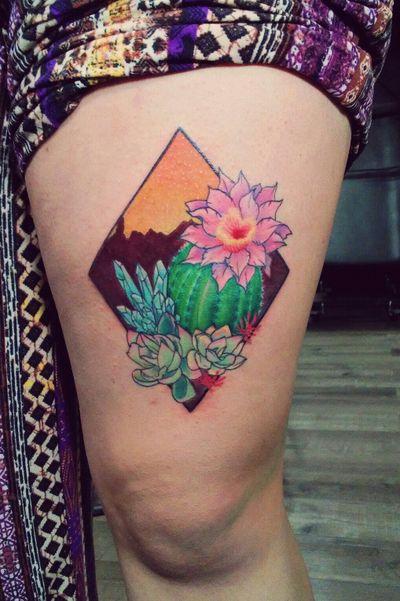 We live in the desert🐫 #desert #crystals #succulents #succulent #cactus #desertplant #desertscene #mountains #flower #diamond #crystal #blue #green #pink