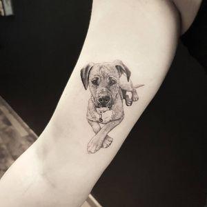 Dog portrait #tat #tats #tattoo #tattoos #ink #inked #inkedlife #freshlyinked #art #realism #portrait #realistictattoo #blackandgrey #dog #dogsofinstagram #miniature #smalltattoo #inkstagram