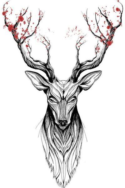 #deer #cherryblossom