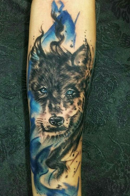 Lobo Aquarelado