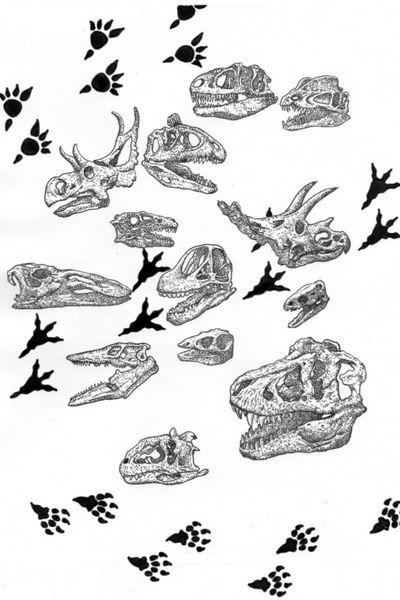 d_krumm_tattoos #Kiev #Krumm #Tattoo #KRUMMTattoо #D_Krumm #linework #lineworktattoo #skull #skulls #paleontology #dinosaur #steps #dotwork #linework #dotworktattoo #heppyness #cool #awesome Астрологи провозгласили месяц черепушек. Количество черепушек возросло.