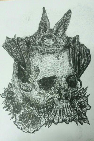 'Belladonna' (2018) #tattoodesigns #tattoodesign #illustration #illustrator #skulls #skulltattoo #bat #battattoo #morbid #morbidart #anatomy