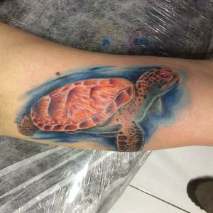 #inspiration #tatuagem #tattoorj #rj #riodejaneiro #tattoo #ink #tattooink #boomproarte #tattooworkers #tattoolife #tattooart #tattoolovers #art #inspirationtattoo #tartaruga #tartarugatattoo #tatuagemcolorida #colors #cor #turtletattoo #turtles #seaturtletattoo #raphapontestattoo