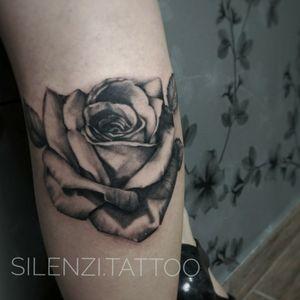 #blackandgrey #blackandgreytattoo #rosestattoo #realistic #realismo #realism #RosasTattoo #tattoo2me #marianasilenzi #silenzitattoo