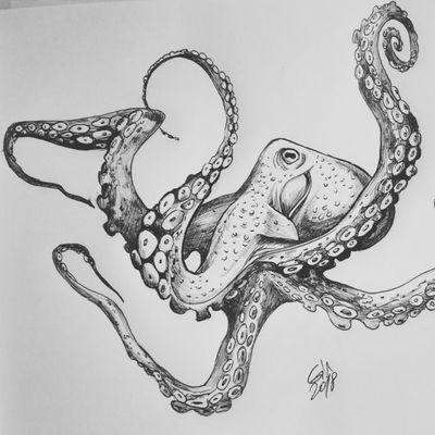 Sketching Octopusss #available #octopustattoo #octopus #tattoo #blackworktattoo