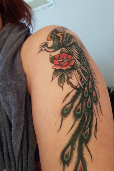 Peacock traditional style tattoo #peacock #peacocktattoo #colourfultattoo #pretty #girlswithtattoos