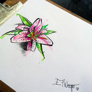 Lírio sketch