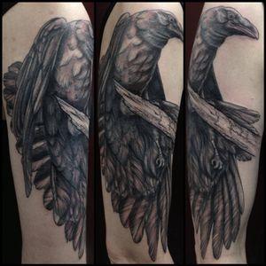 #MaudDardeau #blackandgrey #crow #bird