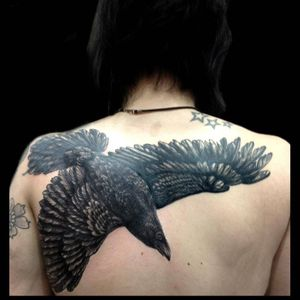 #mauddardeau #crow #blackwork #backpiece #bird