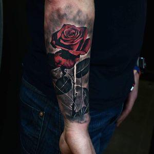 #realistic #rose #bogdan #Paul