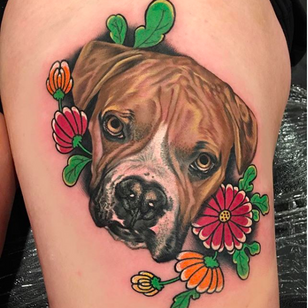 Cutie boxer dog portrait @Grit_N_Glory #dog #boxer