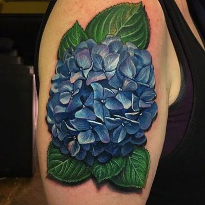 A hydrangea for Emma #flower #flora