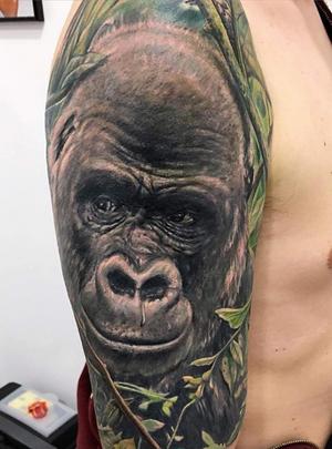 Work by @tiziano_ripanti @tattooexperience #tanks Matteo #😎 #gorilla #gorillatattoo #colour #twosessions @tattooitaliamagazine @tatuaggi_italia @tattoolifemagazine #ancona #tatuagem #tatuaggio